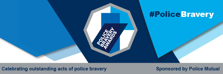 bravery logo and imagery